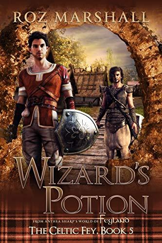 Wizard's Potion: A Feyland Gamelit Tale