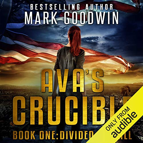 Divided We Fall: A Post-Apocalyptic Novel of America's Coming Civil War: Ava's Crucible, Book 1