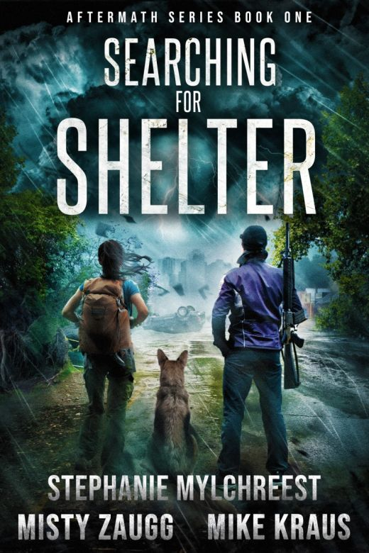 Searching for Shelter